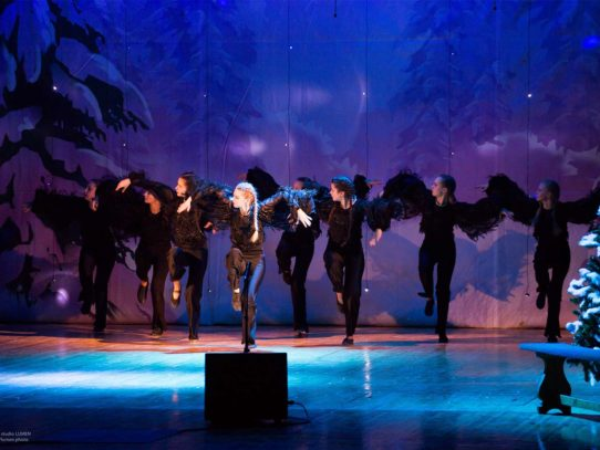 «Образцовый» хореографический коллектив «Гевея»
