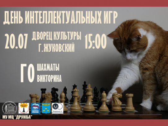 20 июля. Шахматный турнир на улице.