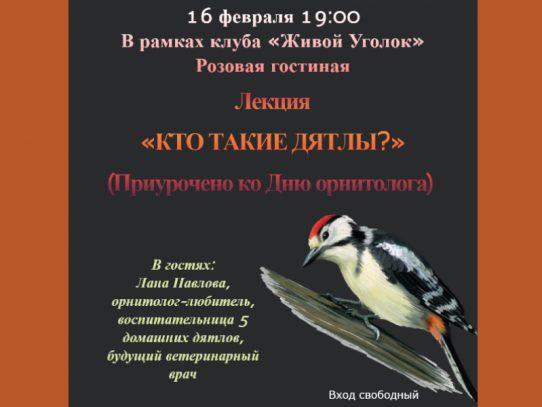 16 февраля 19:00. «Кто такие дятлы?». Лекция, приуроченная ко Дню орнитолога